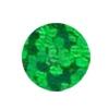 ERVY Turnanzug Veredelung mit Pailletten in der Farbe holo-grün