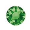 ERVY Turnanzug Veredelung mit Strasssteinen in der Farbe Fern Green