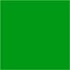 Elastischer Transferdruck froschgrün
